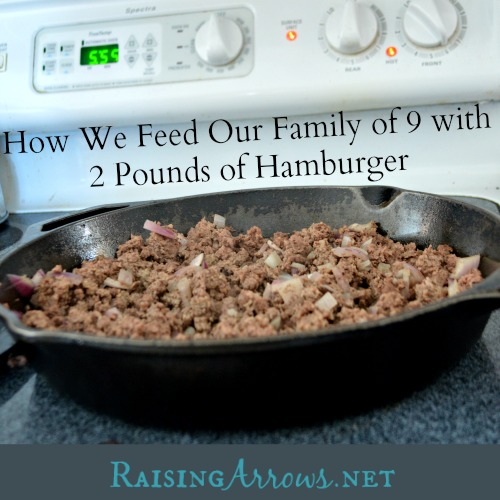 How We Feed Our Family of 9 with 2 pounds of Hamburger