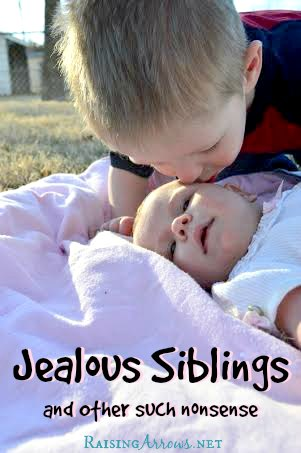Jealous Siblings & Other Such Nonsense - the answer to what's really behind it from a mom of 9 | RaisingArrows.net