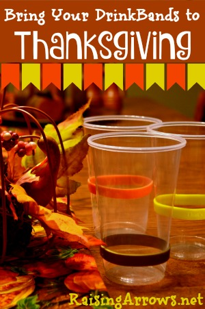 Keep track of all the cups and keep sickness at bay with DrinkBands! {Giveaway going on right now!}   RaisingArrows.net