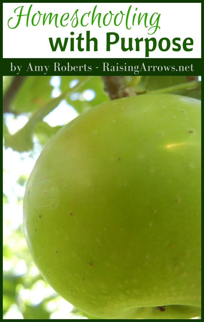 Homeschooling with Purpose cover