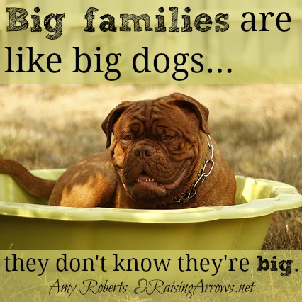 Most of the time large families don't even notice they are large.