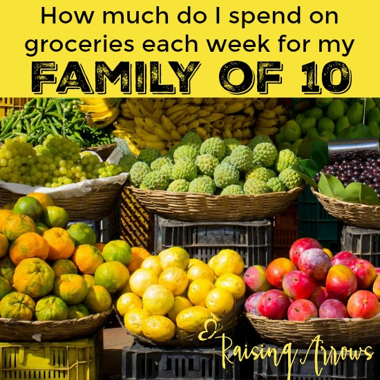 How Much Does it Cost to Feed My Large Family?