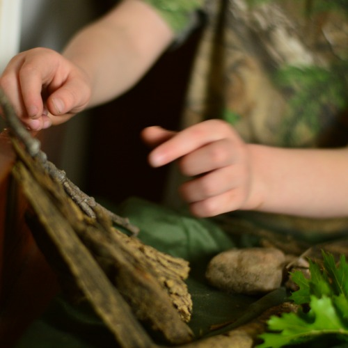 Creating a Nature Table - a simple homeschool nature study solution!