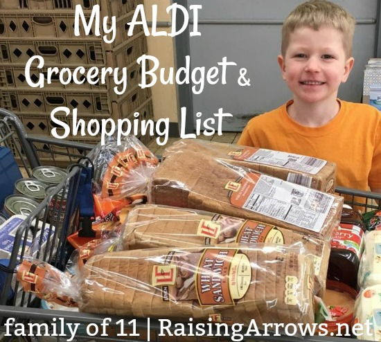 Aldi Shopping List & Grocery Budget (Large Family)