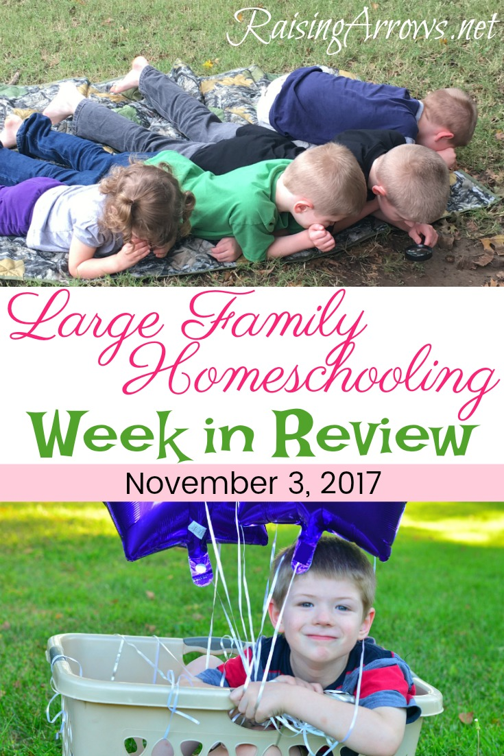 Large Family Homeschooling Week in Review from Raising Arrows 11/3/17
