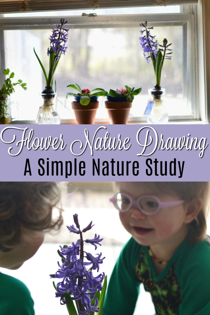 Flower Nature Drawing is a such a simple nature study that doesn't require special resources!