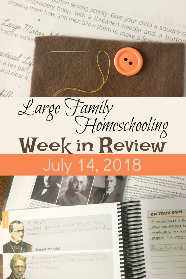 Homeschooling in a large family has its challenges! Visit our homeschool this week to see how we do it!