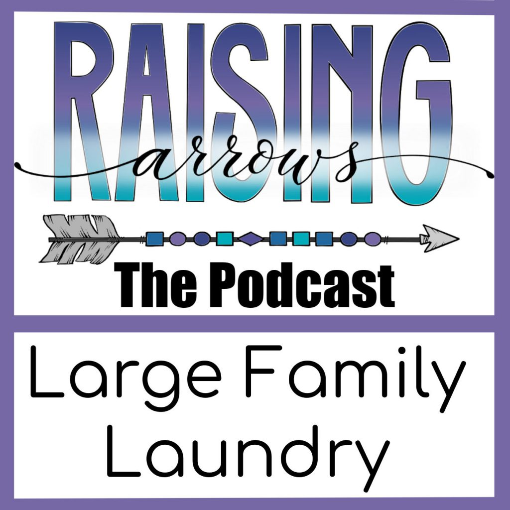 Laundry is a part of our everyday existence, especially in a large family!  Learn the secrets of our daily laundry chores!