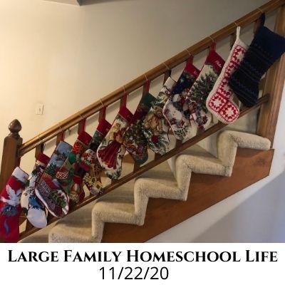 Large Family Homeschool Life – 11/22/20