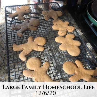 Large Family Homeschool Life – 12/6/20
