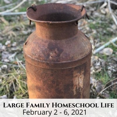 Large Family Homeschool Life – 2/1/21 – 2/6/21