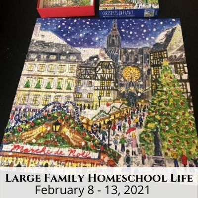 Large Family Homeschool Life – 2/8/21 – 2/13/21
