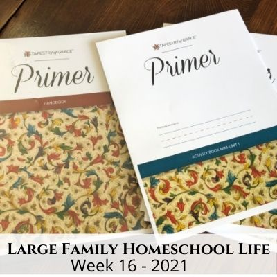 Large Family Homeschool Life – Week 16 of 2021