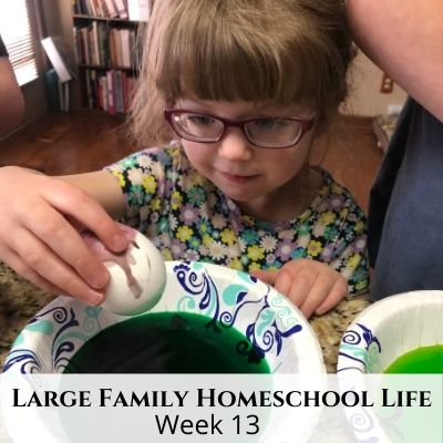Large Family Homeschool Life – Week 13 of 2021