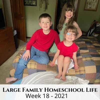 Large Family Homeschool Life – Week 21 of 2021