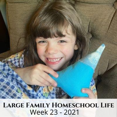 Large Family Homeschool Life – Week 23 of 2021