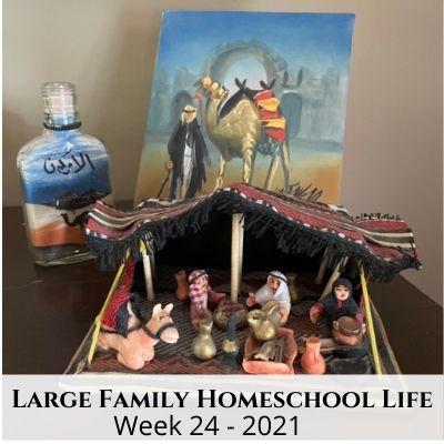 Large Family Homeschool Life – Week 24 of 2021