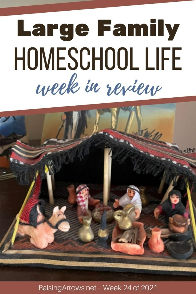 Come find out what went on in our large family home and homeschool this week in June!