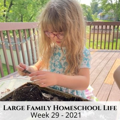 Large Family Homeschool Life – Week 29 of 2021