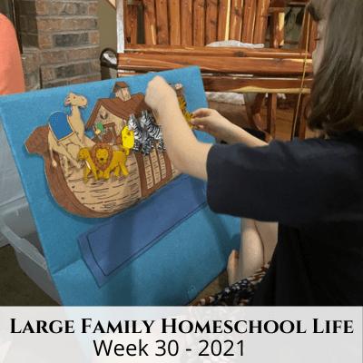 Large Family Homeschool Life – Week 30 of 2021