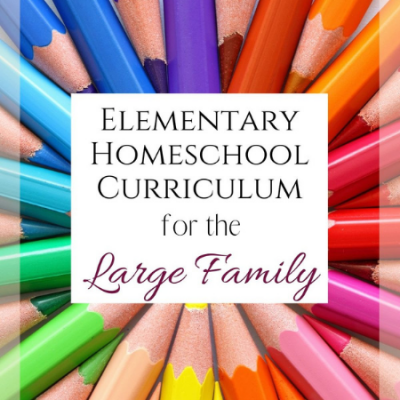 Elementary Homeschool Curriculum Picks for the Large Family