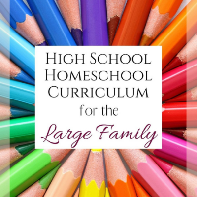 High School Homeschool Curriculum for the Large Family