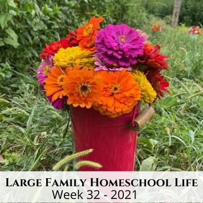 Large Family Homeschool Life – Week 32 of 2021