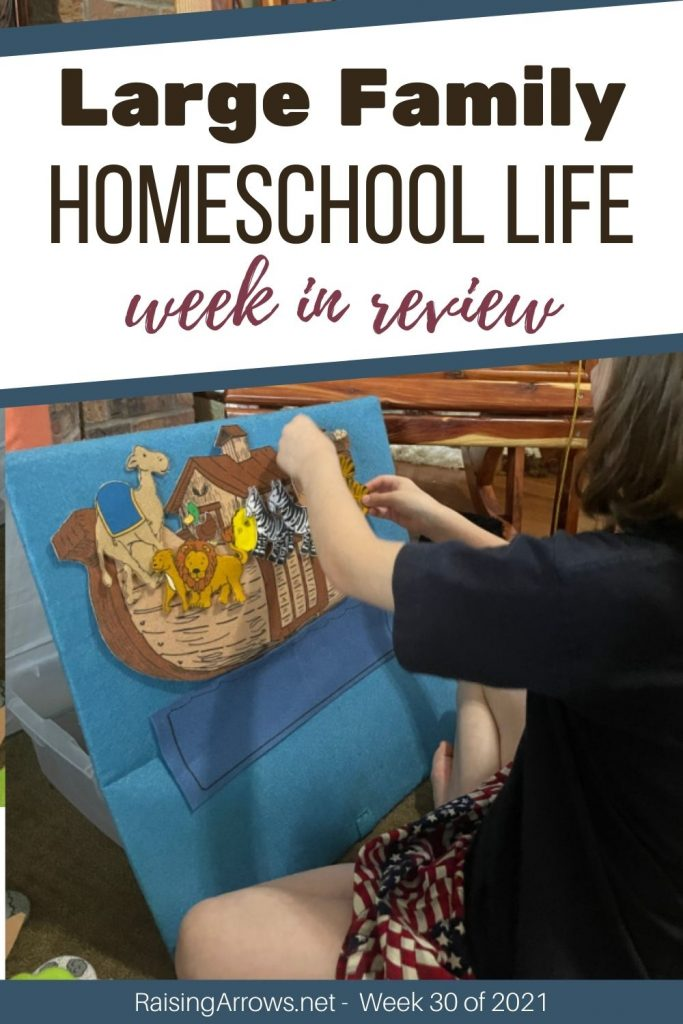 Check out what went on in our large family home and homeschool this week in July!