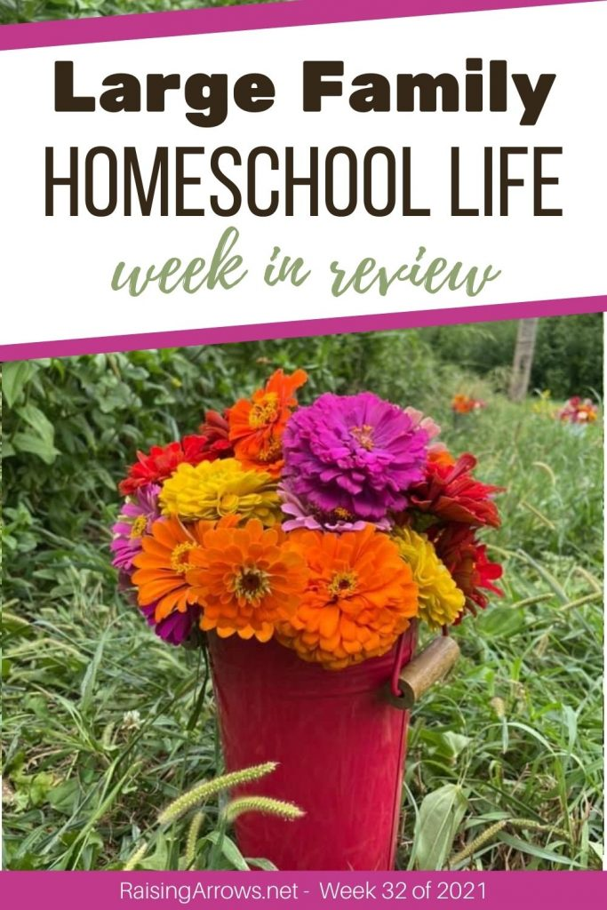 Check out what went on in our large family home and homeschool this week in August!