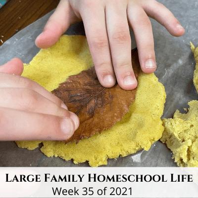 Large Family Homeschool Life – Week 35 of 2021