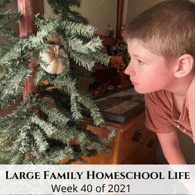 Large Family Homeschool Life – Week 40 of 2021