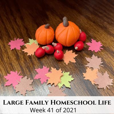 Large Family Homeschool Life – Week 41 of 2021