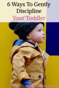 discipline your toddler | gentle parenting | parenting toddlers | how to discipline a toddler |