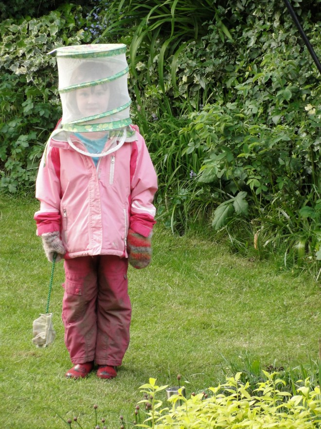 Rose Dressed Up As A Bee Keeper