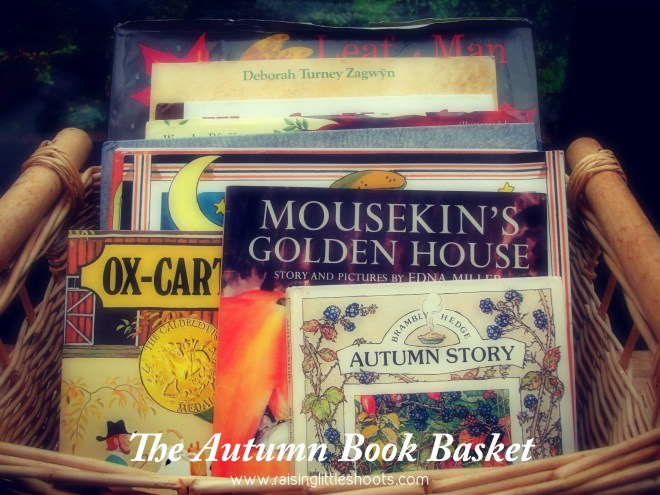 The Autumn Book Basket