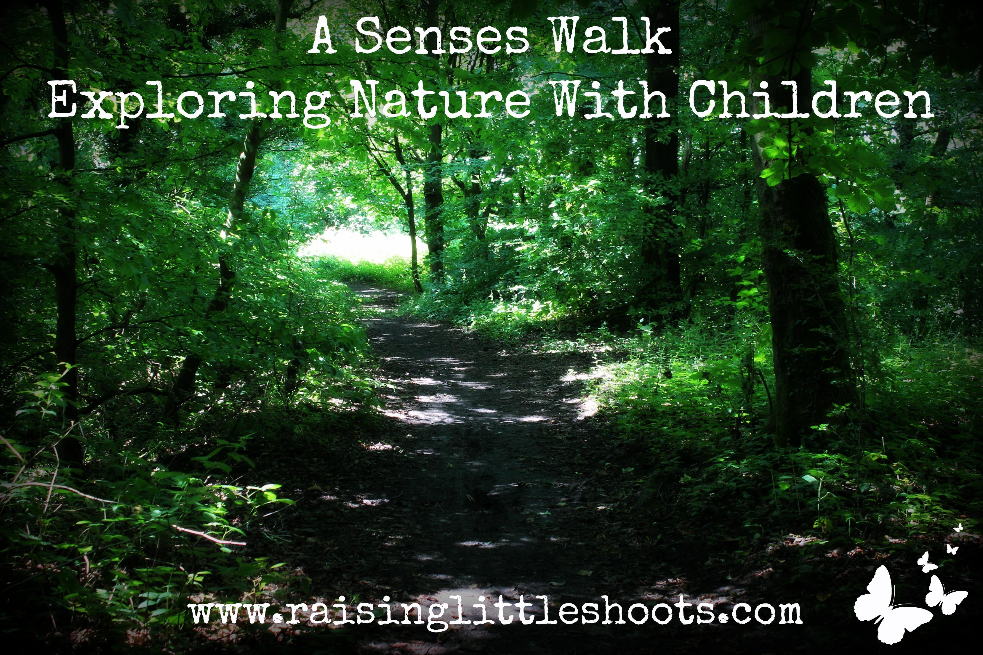 A Senses Walk Exploring Nature With Children