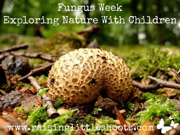 Fungus Week