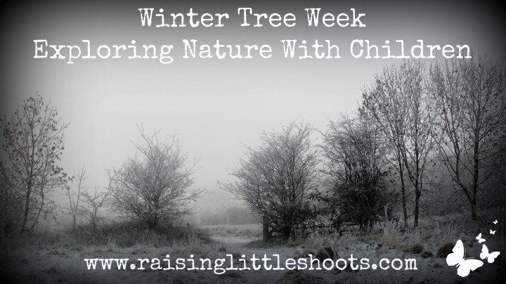 Winter Tree Week.jpg