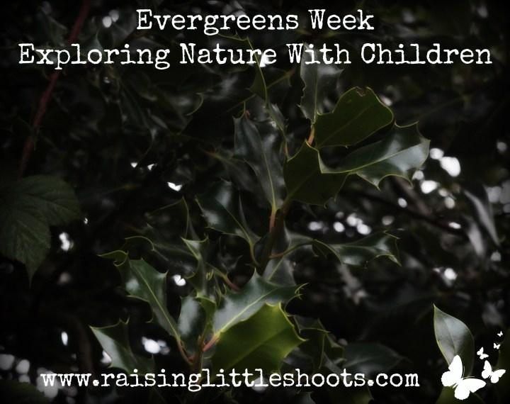 Evergreens week.jpg