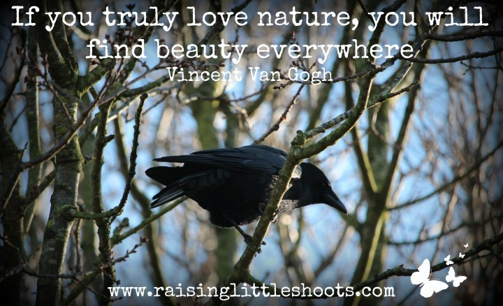 if you truly love nature.jpg