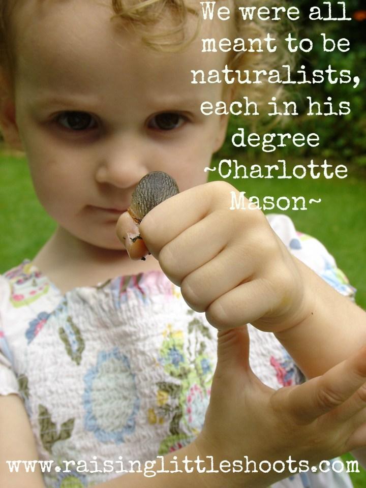naturalists copy.jpg