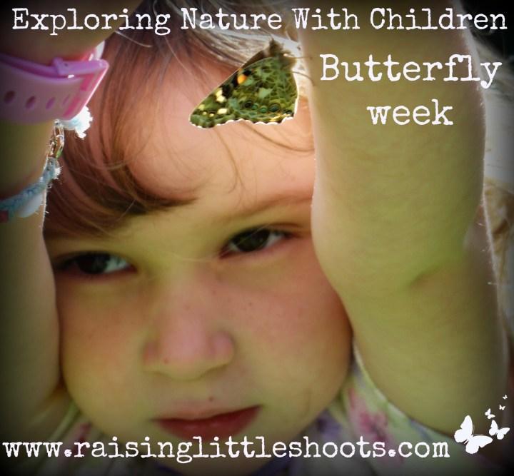 butterfly week.jpg