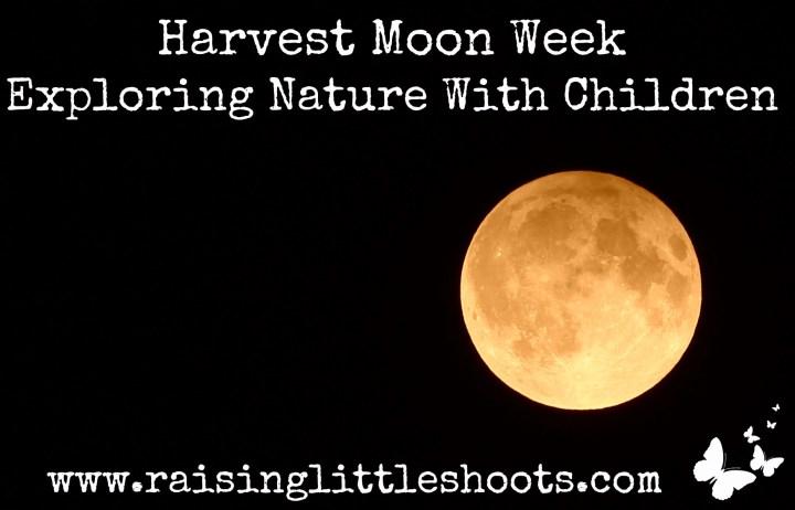 Harvest Moon Week.jpg