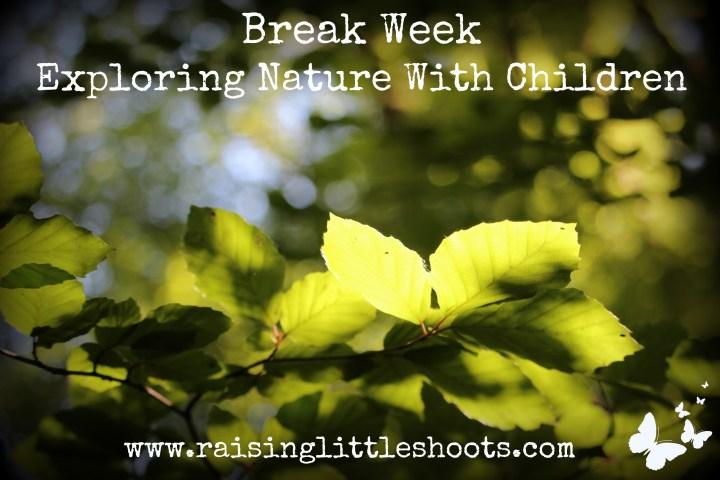Break Week copy.jpg