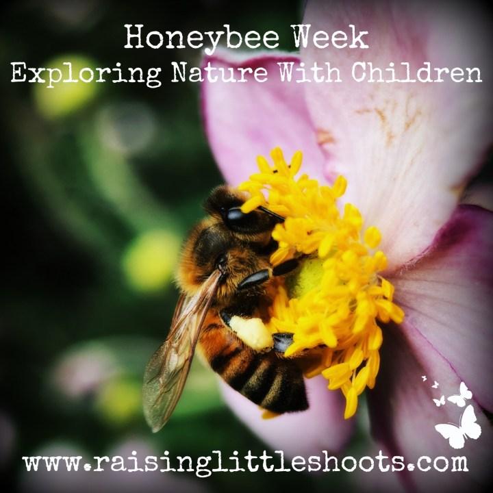 Honeybee Week copy.jpg