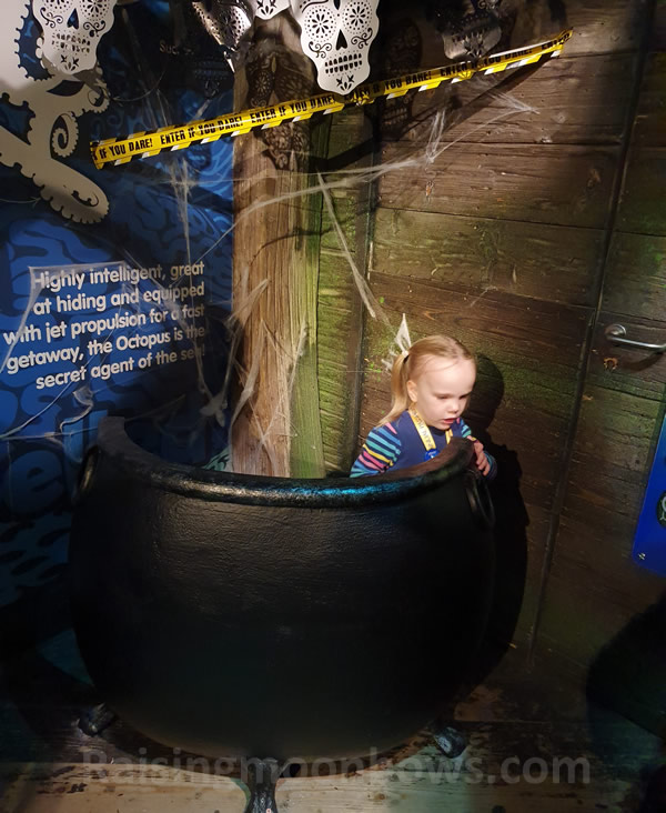 Ro in a halloween cauldron sealife
