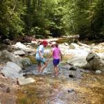 Science All Around: Lessons Your Kids Can Experience in the Great Outdoors