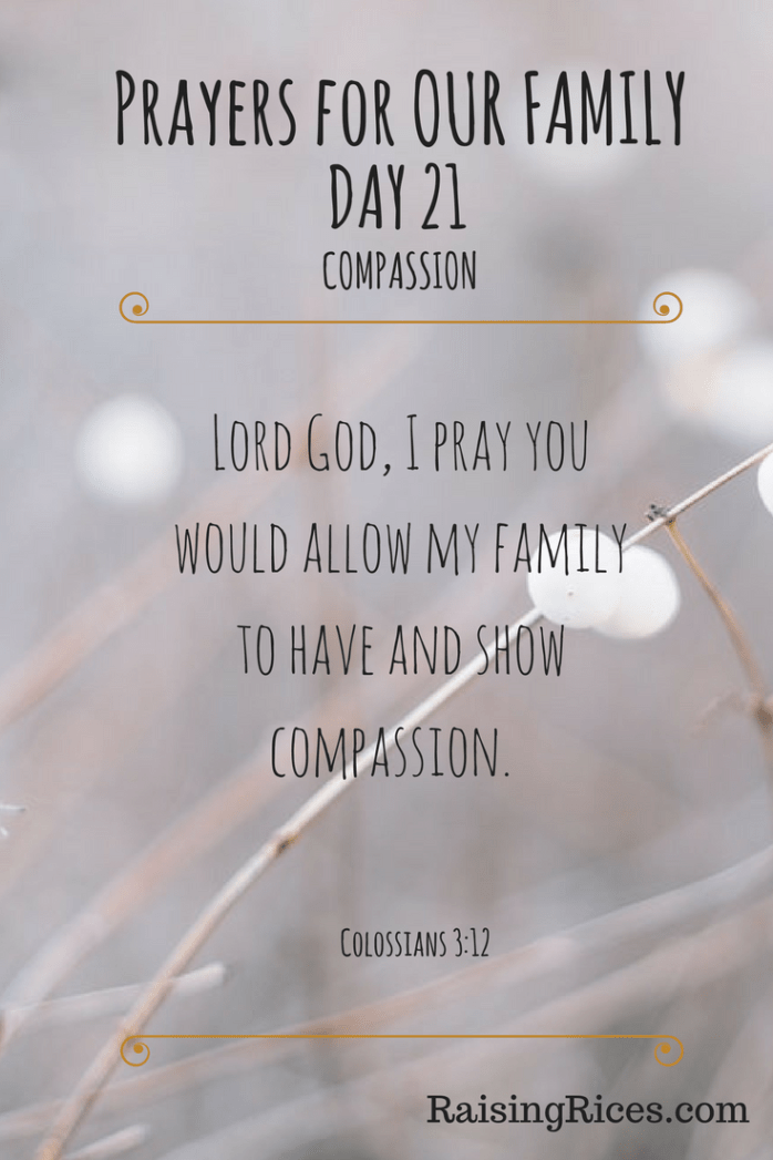 Prayers for OUR FAMILY - DAY 21.png