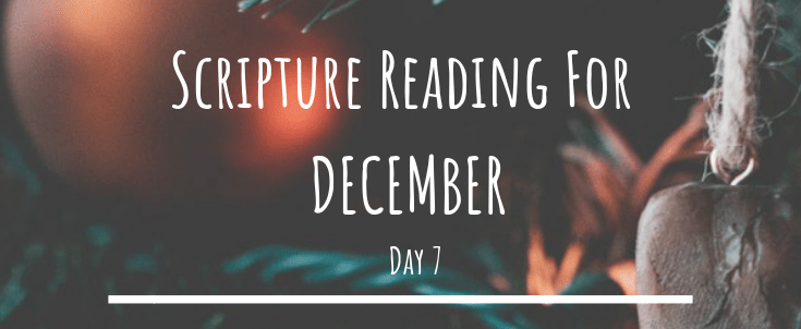 December Scripture Reading – Day 7