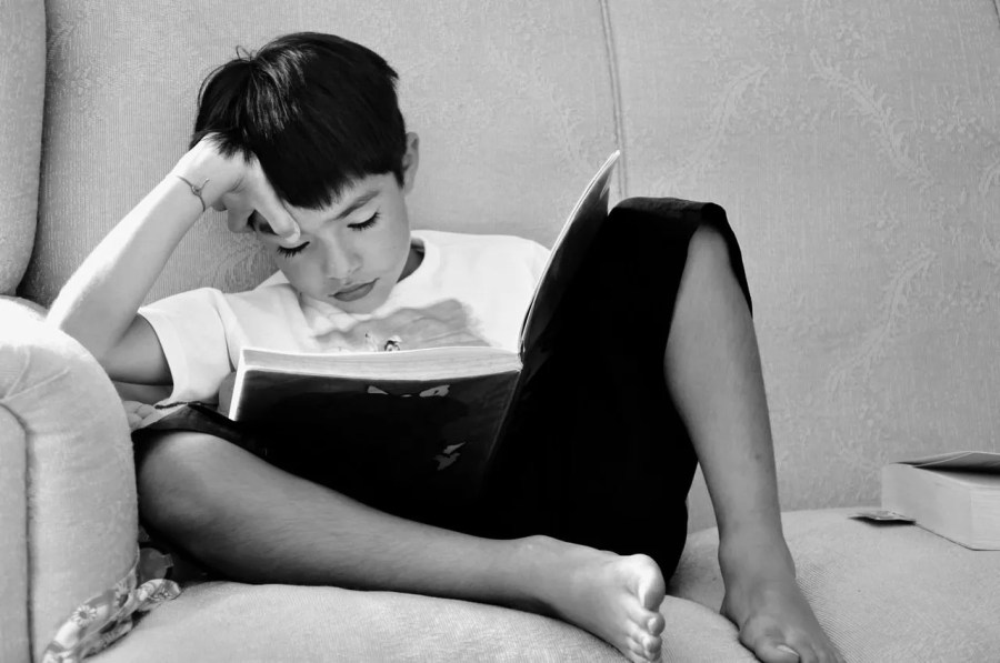 Reading for fun and pleasure is essential to de-schooling.